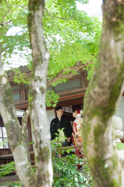 新潟県三条市 燕市 長岡市 結婚式場 前撮り 打掛 ブライダルフォト 写真 椿寿荘