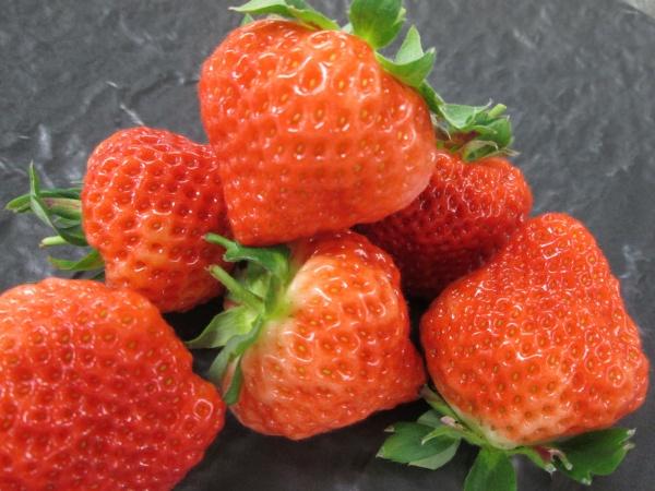 【スイーツだけじゃない!イチゴの美味しい調理法とは】甘さと香りが大活躍の結婚式の定番アイテム★