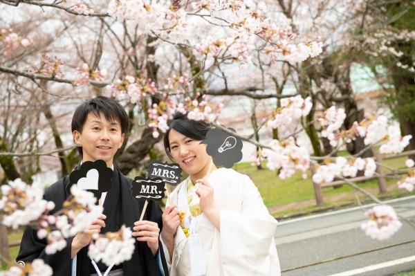 新潟県三条市 新潟市 長岡市 見附市 結婚式場 出張 前撮り 和装 アルバム 桜
