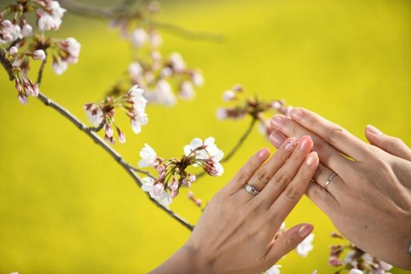新潟県三条市 長岡市 新潟市 結婚式場 ウェディングレポート 両親 結婚式レポート