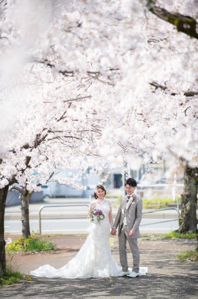 新潟県三条市 長岡市 新潟市 結婚式場 前撮りフォト ロケーションフォト 桜 和装 ドレス 花嫁