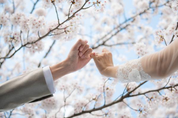 【おすすめ◆前撮りフォト】この時期は桜!桜と一緒に前撮りした花嫁さまの素敵フォトまとめ★