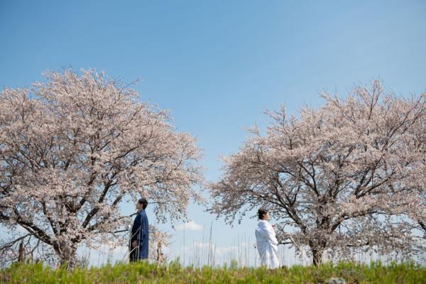 【味覚で春を感じよう♪】結婚式はテーマも大事!飲み物で春を感じる?桜を使った限定ドリンク!