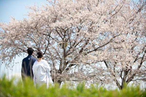 新潟県三条市 長岡市 三条市 見附市 結婚式場  お呼ばれ衣裳 着物 伝統
